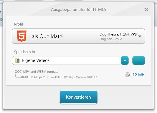 Freemake Video Converter - in HTML5 konvertieren