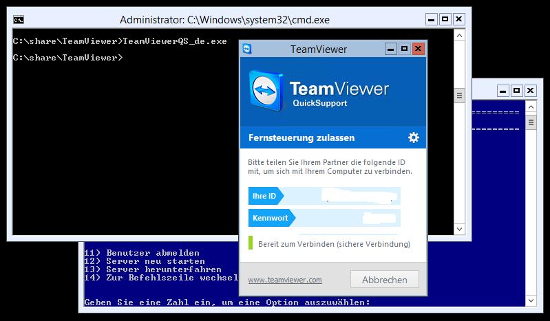 TeamViewer 9 QuickSupport und Hyper-V Server 2012 R2 - 1