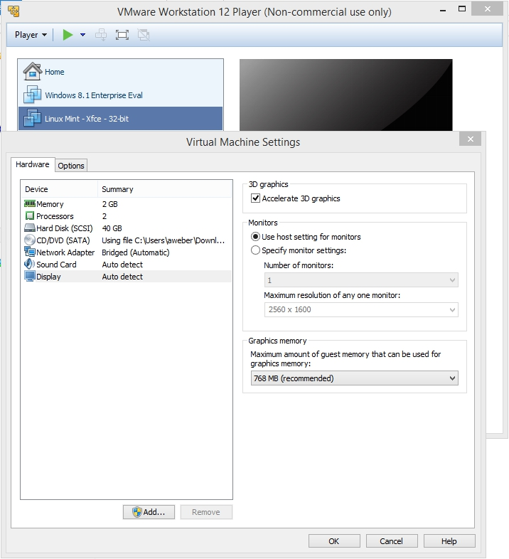 VMware Workstation Player - Display